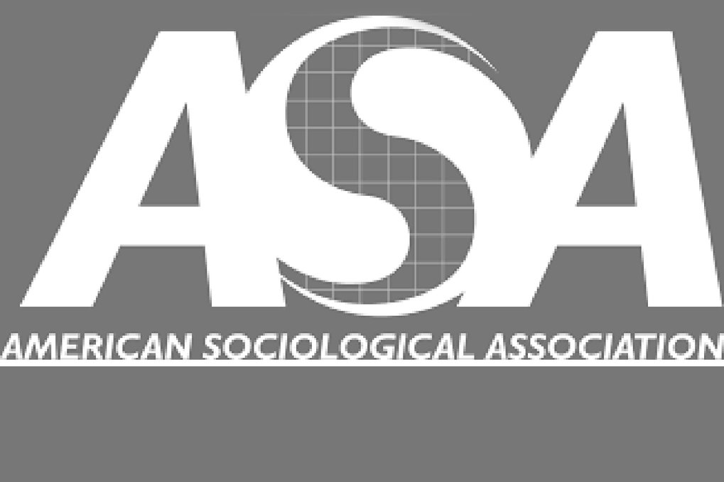 ASA Sociology of Human Rights Section's Best Article Award