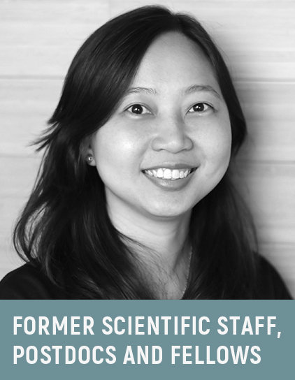 Dr. Theodora Lam Choy Fong, 2016-2017
