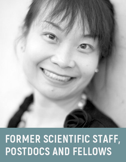 Dr. Rumin Luo, 2012-2014